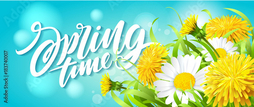 Inscription Spring Time on fresh spring background with grass, dandelions and daisies Fototapeta