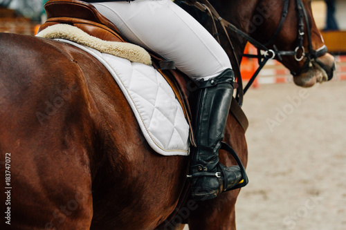 Poster Equitation Horse jumping contest. The Equestrian Sports. Horseman sitting in saddle