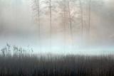 Pastelowa Jesień i Mgła  - 183756463