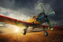 Fly In The Desert