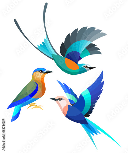 Stylized Birds - Abyssinian, Indian and Blue-bellied Roller Wall mural