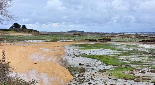 Papiers peints Kaki Paysage de Bretagne à Lanmodez face à l'île Bréhat
