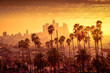canvas print picture - Beautiful sunset of Los Angeles downtown skyline and palm trees in foreground