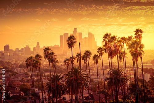 Naklejka premium Piękny zachód słońca panoramę centrum Los Angeles i palmy na pierwszym planie