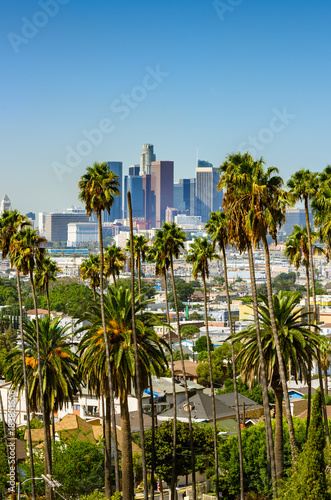 Staande foto Los Angeles Los Angeles, California, USA downtown skyline and palm trees in foreground