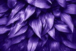 canvas print picture - Ultra Violet background made of fresh green leaves.