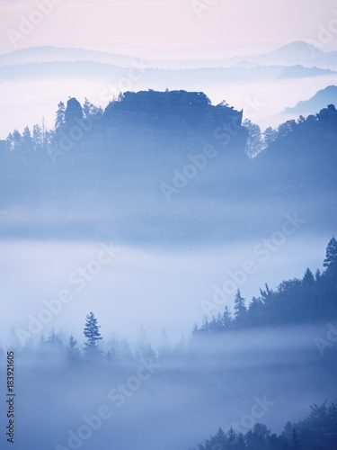 Aluminium Prints Dreamy landscape lost in thick fog. Fantastic morning glowing by gentle sunlight, foggy valley.