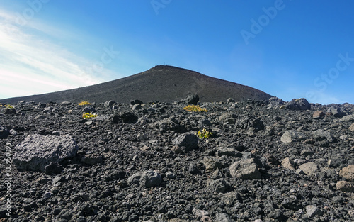 crateri sommitali vulcano Etna 107 Canvas Print