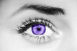 canvas print picture - Ultra Violet eye