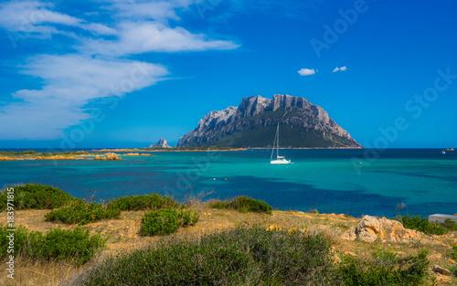 isola tavolara with sailboat on a sunny day on sardinia Canvas Print