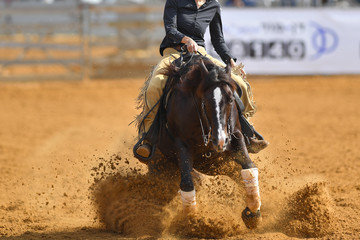 The front view of a rider in cowboy chaps and boots sliding the horse into the sand