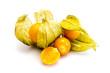 canvas print picture - physalis frucht kapstachelbeere  isoliert freigestellt auf weißen Hintergrund, Freisteller