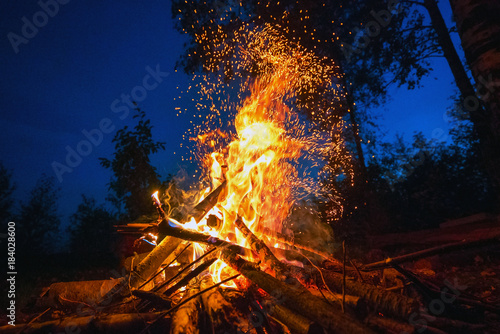 Bright fire on a dark night in a forest glade.