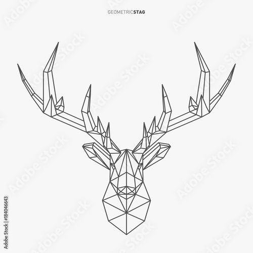 Vector Geometric Deer Line Art Low Poly Style Animal Drawing Stag Head And Antlers