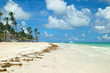 Beach in Punta Cana, Dominican Republic. Bright colors of the