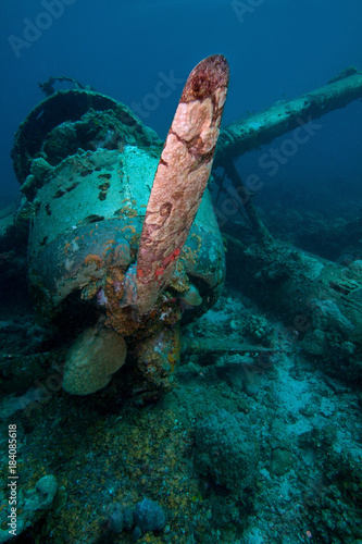 Japanese Jake sea plane, shot down during World War II, sits on a coral reef Wallpaper Mural