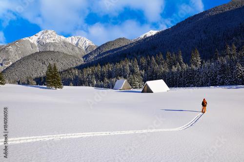 Photo  Skier in Chocholowska valley during winter season, Tatry Mountains, Poland