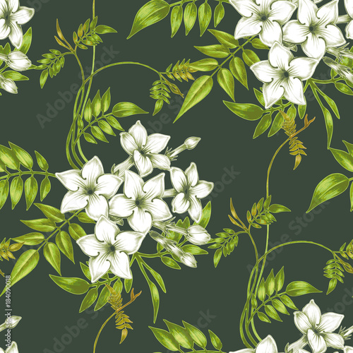 Vector seamless floral pattern with jasmine flowers. Poster Mural XXL