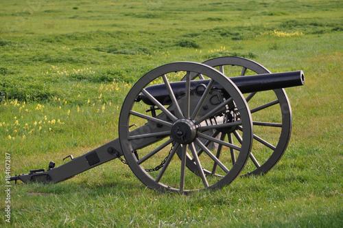 Fotografie, Obraz  Single cannon in field