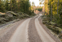 Winding Gravel Road In A Forest