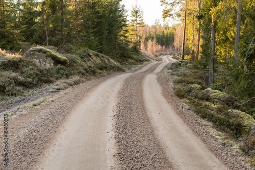 Zdjęcie XXL Wijąca żwir droga w lesie