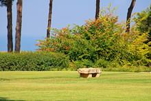 Stone Bench In Park Ramat Hanadiv, Memorial Gardens Of Baron Edmond De Rothschild, Zichron Yaakov, Israel
