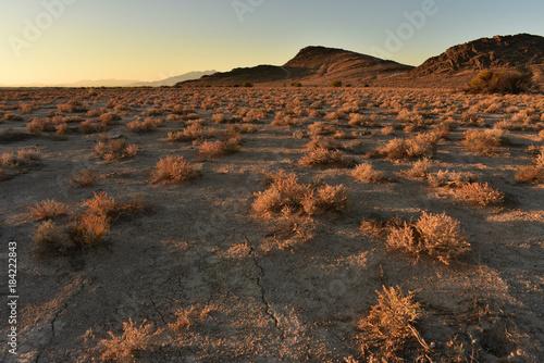 sunrise Mojave desert landscape on the outskirts of Pahrump, Nevada, USA