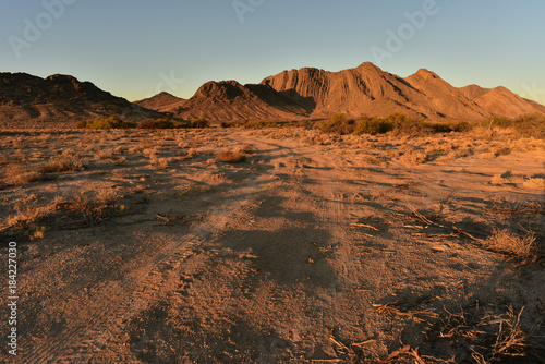 Fotobehang Diepbruine off road Mojave desert landscape in Pahrump, Nevada, USA