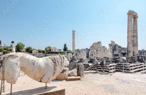 Fototapeta Apollo Temple at Didyma in Didim,Aydin,Turkey.