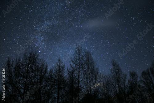 Photo みずがき自然公園から瑞牆山と冬の星空