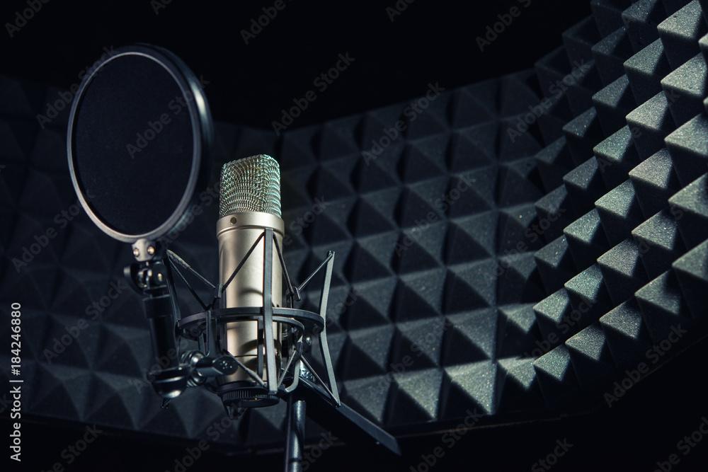 Fototapeta Modern professional microphone in recording studio