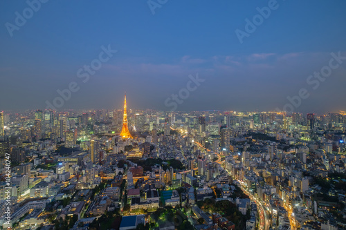 Photo  Japan cityscape Tokyo tower light up twilight time famous tower iconic landmark