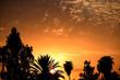 Beautiful sunset in a public park