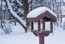 Wooden  Bird Feeder In The Win...