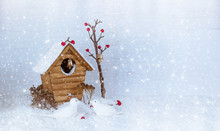 Christmas Winter Background With Birdhouse And Birds Pecking Berries On Snow