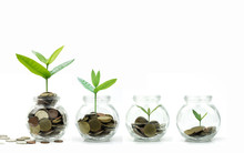Save Money And Investment Concept, Tree And Coins Growing Up In Glass Isolated On White Background .