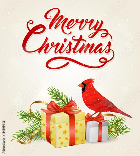 Valokuva  Red cardinal bird and gifts