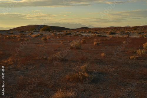 Fotobehang Chocoladebruin Mojave desert dawn landscape Pahrump, Nevada
