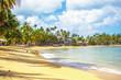 the view of caribbean beach