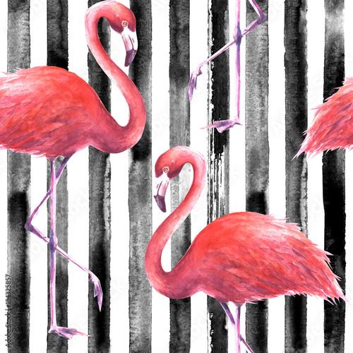 bezszwowy-rozowy-flaminga-wzor