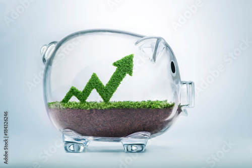 Fototapeta Growing savings arrow graph concept obraz