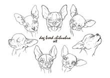 Dog Breed Chihuahua Set