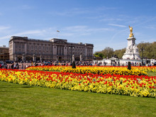 Buckingham Palace And Victoria...