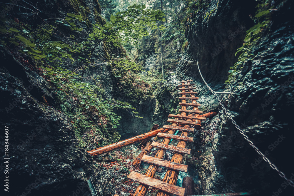 Abandoned old wooden bridge with backup metal chain in deep wild lush jungle forest. Road to nowhere. Outdoor extreme activities. Wild nature. Artistic retouching. Vintage style.