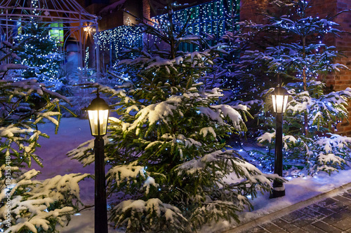 Keuken foto achterwand Bossen Street lights, Christmas trees in the snow with blue garlands create a festive atmosphere. Beautiful New Year's Landscape,Christmas tree in the snow