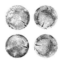 Set Of Tree Rings Background. ...