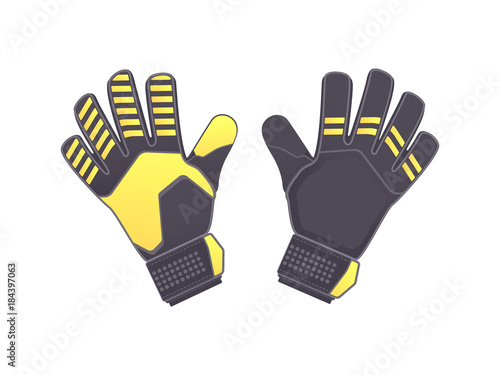 Vászonkép Goalkeeper protection gloves