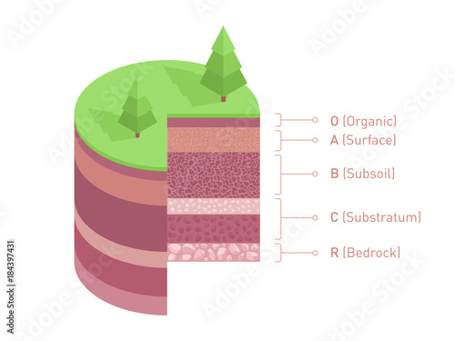 Soil Layers Diagram Isometric Soil Horizons And Profile Earth