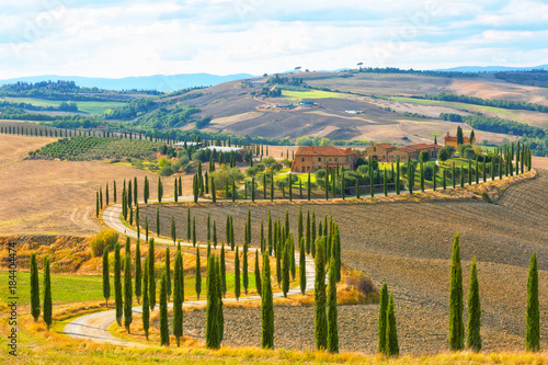 Foto op Aluminium Oranje Landscape of hills, country road, cypresses trees and rural houses,Tuscany , rural Italy