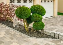 Kleiner Ziergarten Mit Kugelförmig Geschnittenen Büschen Felsen Und Pflastersteinen - Small Ornamental Garden With Spherical Cut Bushes, Rocks And Paving Stones